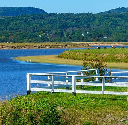 Katy's Cove at Andrews By the Sea, New Brunswick